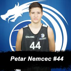 Petar Nemcec